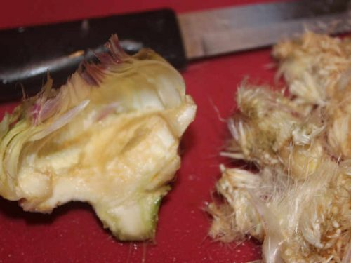 final stage of turning an artichoke
